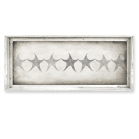 rectangle framed canvas art row starfish