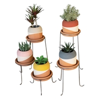 Set of 5 Color-Dipped Clay Pots  Stands