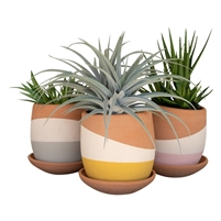 Set 3 Color-Dipped Clay Pots Saucers