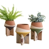 set 3 colorful earthy terra cotta pots wood stands