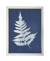 Photography art print white silhouette fern indigo navy background pewter silver frame