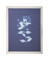 Photography art print white silhouette Jacob's Ladder indigo navy background pewter silver frame