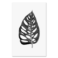large leaf photography art framed oversized black white