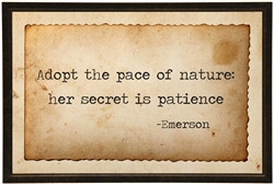 Emerson quote Adopt tea-stained paper black shadowbox frame