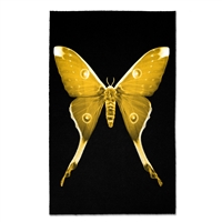 butterfly photography wall art paper framed yellow black