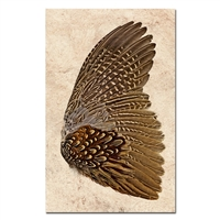 feathers pheasant paper art print frame brown