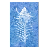 paper print wall art framed sea spine nautical