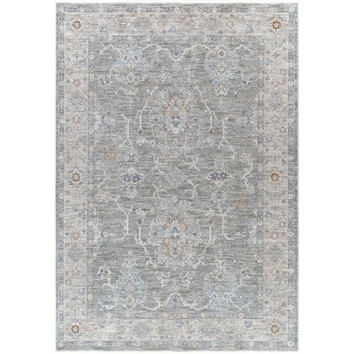 gray, blue and beige area rug