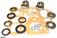 LC10 Transfer Case Bearing and Seal Kit, BK263
