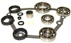 BW4411 Transfer Case Bearing & Seal Kit, BK4411 - Transfer Case Parts