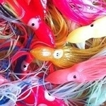 "8"" Squid Skirts - 5 skirts per pack"