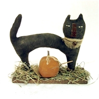 Cat with Pumpkin $47.50