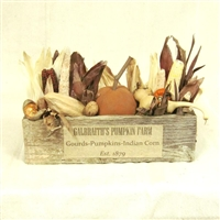 Galbraiths Pumpkin Farm Arrangement $63.50