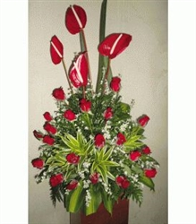 Anthurium & red roses