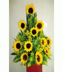Sun flowers arrangement