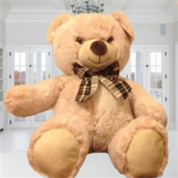 TEDDY BEAR 25'' INCHES, BOGOTA ONLY