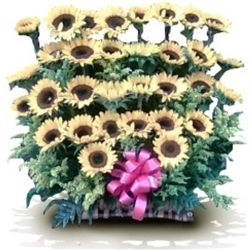 Sunflowers Arrangement