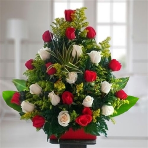 Two dozen red and white roses in vase.