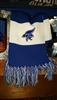 Blue Jay Striped Scarf