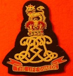 Life Guards Blazer Badge