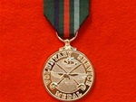 The Voluntary Service Medal ( Full Size Commemorative Medal )
