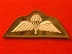 Combat Badge Ivory Multicam Parachute Regiment Wings Airborne