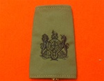 WO1Olive Combat Rank Slide ( Warrant Officer Class 1 Olive Drab Combat Rank Slide )