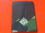 2nd LT Jungle Combat Rank Slide ( Second lieutenant Jungle Combat Rank Slide )