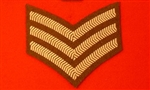 FAD Uniform SGT Chevron ( Future Army Dress Sergeant Stripes )
