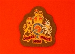 FAD Warrant Officer First Class Uniform Badge ( WO1 Future Army Dress Badge )