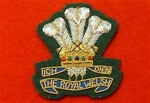 Officers Royal Welsh Wire Beret Badge