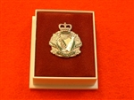 Quality The Royal Irish Regiment Enamel Lapel Badge ( RIR Lapel Badge )