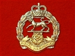 The Royal Hampshire Regiment Cap Badge Queens Crown