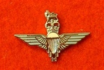 Enamel Parachute lapel Badge