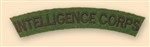 Re-Enactors Intelligence Corps Shoulder Title ( Reenactors IC Badges )