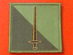 42nd North West Brigade Combat TRF Badge Subdued