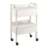 Paragon ~ H3 Facial Trolly