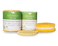 Intrinsics ~ Compressed Sponges