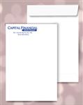 9 x 12 Catalog Envelopes, 1 PMS color print, #20040PMS