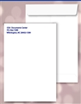 10 x 13 Catalog Envelopes, 1 PMS color print, #20060PMS