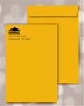 9 x 12 Brown Kraft Catalog Envelopes, Black print, # 25040P