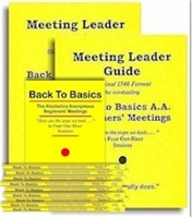 Meeting Leader Guides-2 (Original Format ) and 10 Back to Basics Books
