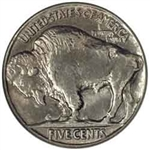 1913 Type 2 Buffalo Head Nickel Coins