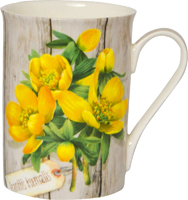 Eranthis Hyemalis Bone China Mug