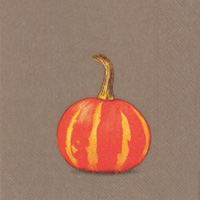Pumpkin Party Brown Cocktail Napkins