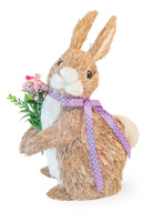 Floral Bunny Willow