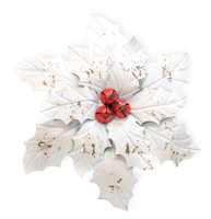 White Poinsettia Wall Art