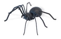 Black Metal Spider Large
