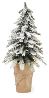 Snowy Pines Potted Pinetree Medium