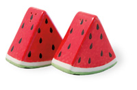 Watermelon Salt & Pepper Set